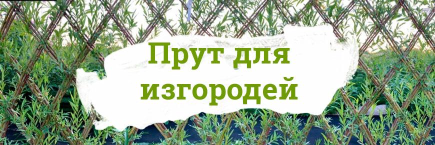 Для живых изгородей